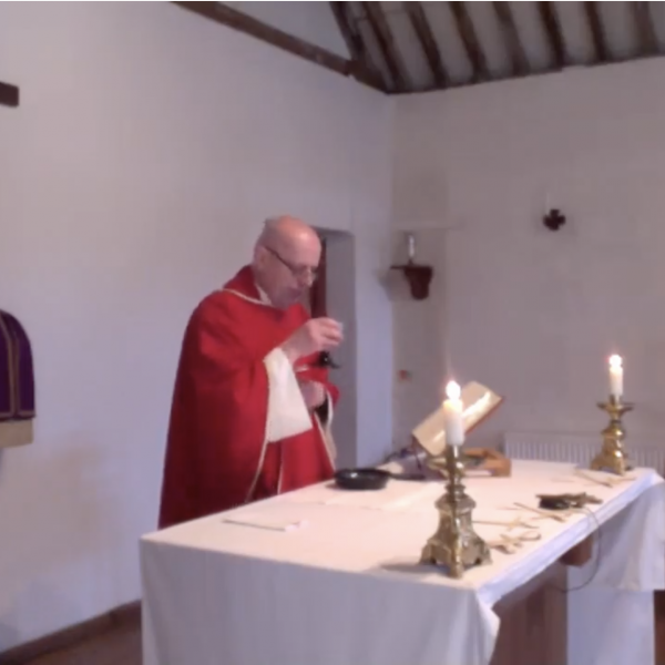 Fr celebrating Mass via Liverstream